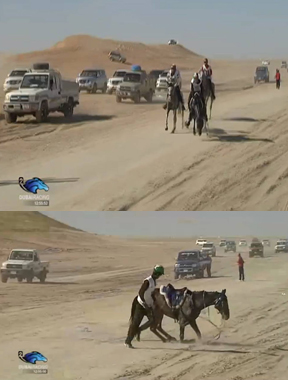 In the top photo, Splitters Creek Bundy begins to fall forward, in the second loop of the Al Reef Cup. In the bottom photo, captured 20 seconds later, he is seen collapsing over his fractured forelegs. Images from Dubai Racing TV live stream